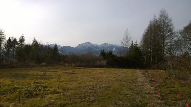 八ヶ岳演習林から望む八ヶ岳