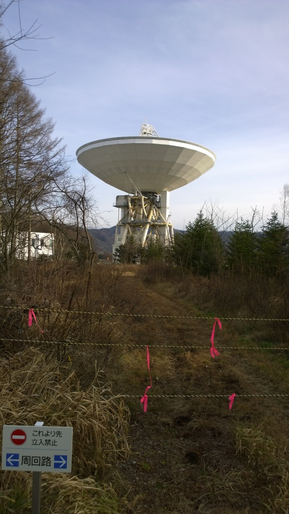 演習林から望む野辺山天文台のパラボラ