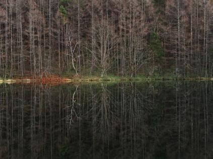 初冬の御射鹿池、鏡像3