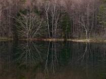 初冬の御射鹿池、鏡像2