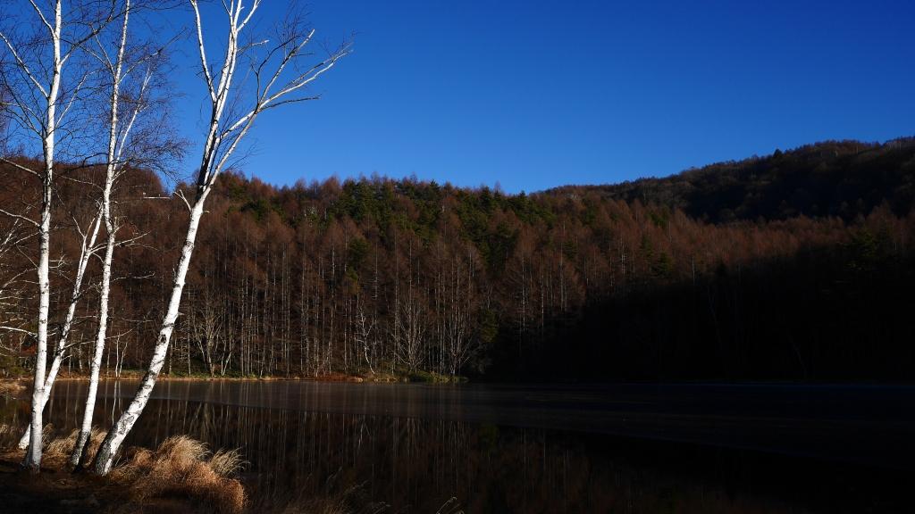 雪の無い御射鹿池1