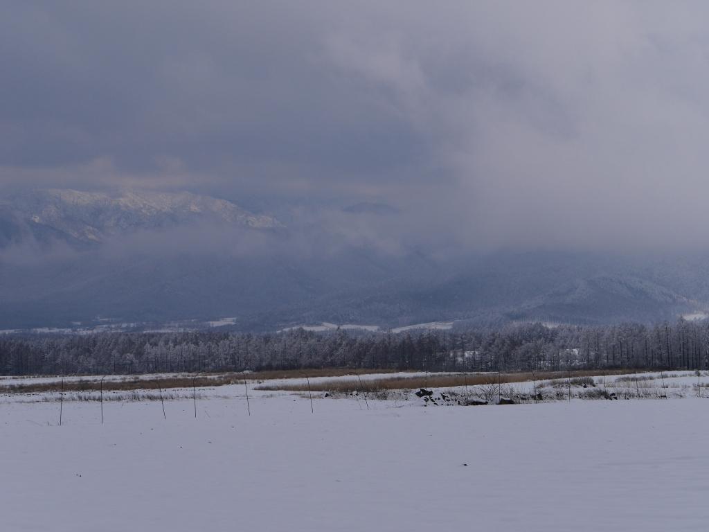 樹氷と雪原の野辺山7