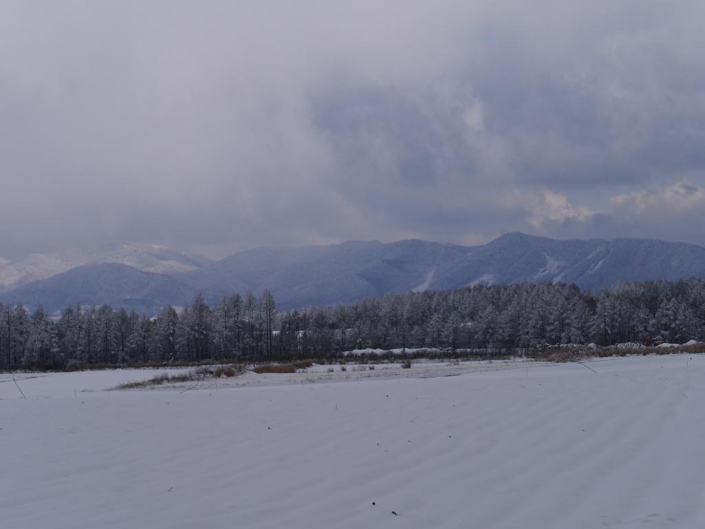 樹氷と雪原の野辺山8