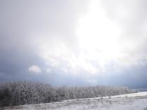 樹氷と雪原の野辺山2
