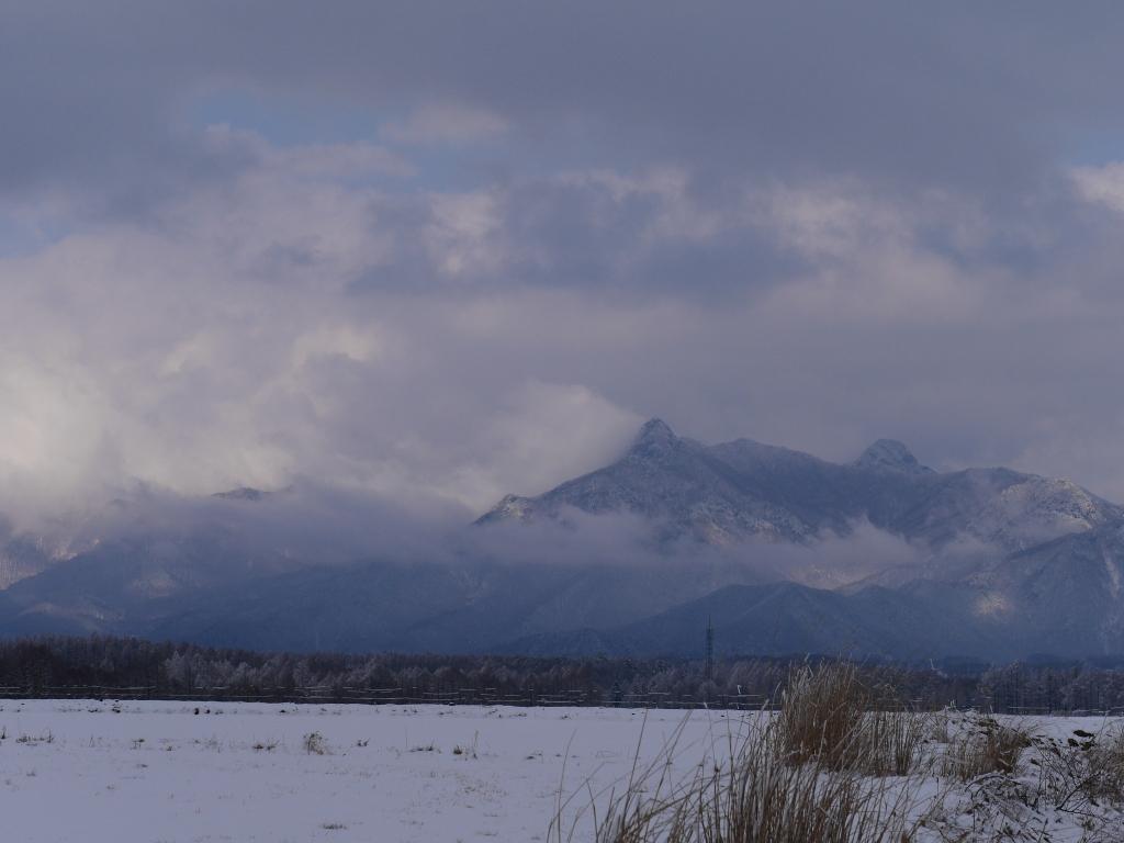 樹氷と雪原の野辺山10