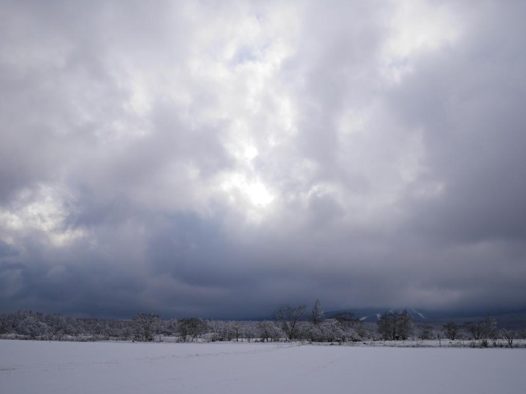 樹氷と雪原の野辺山12