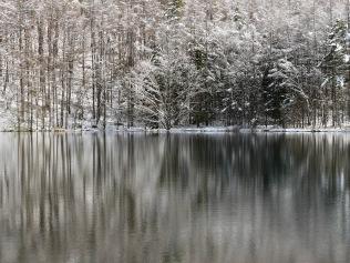 御射鹿池の樹氷1
