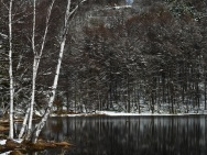 御射鹿池の樹氷7