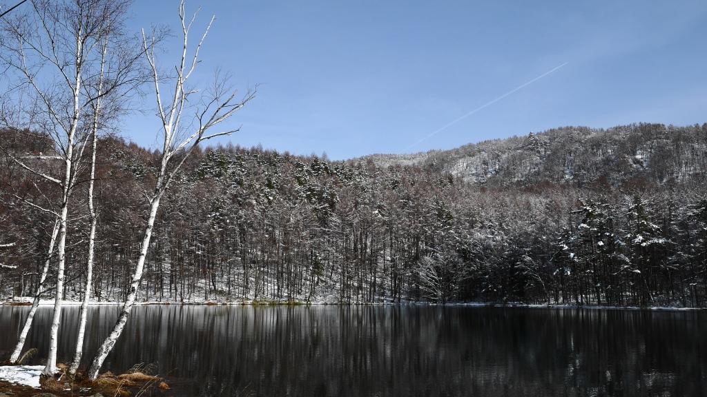 御射鹿池の樹氷9