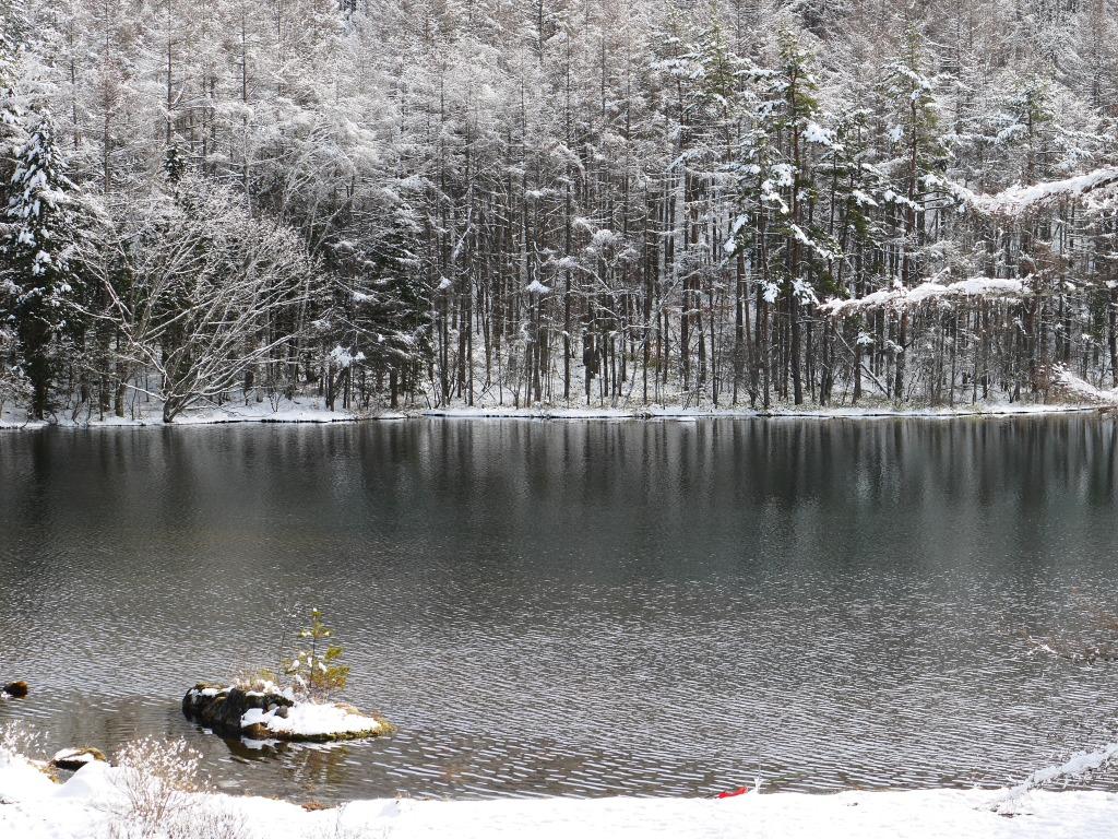 御射鹿池の樹氷5
