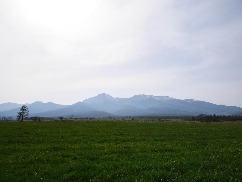 牧草と八ヶ岳