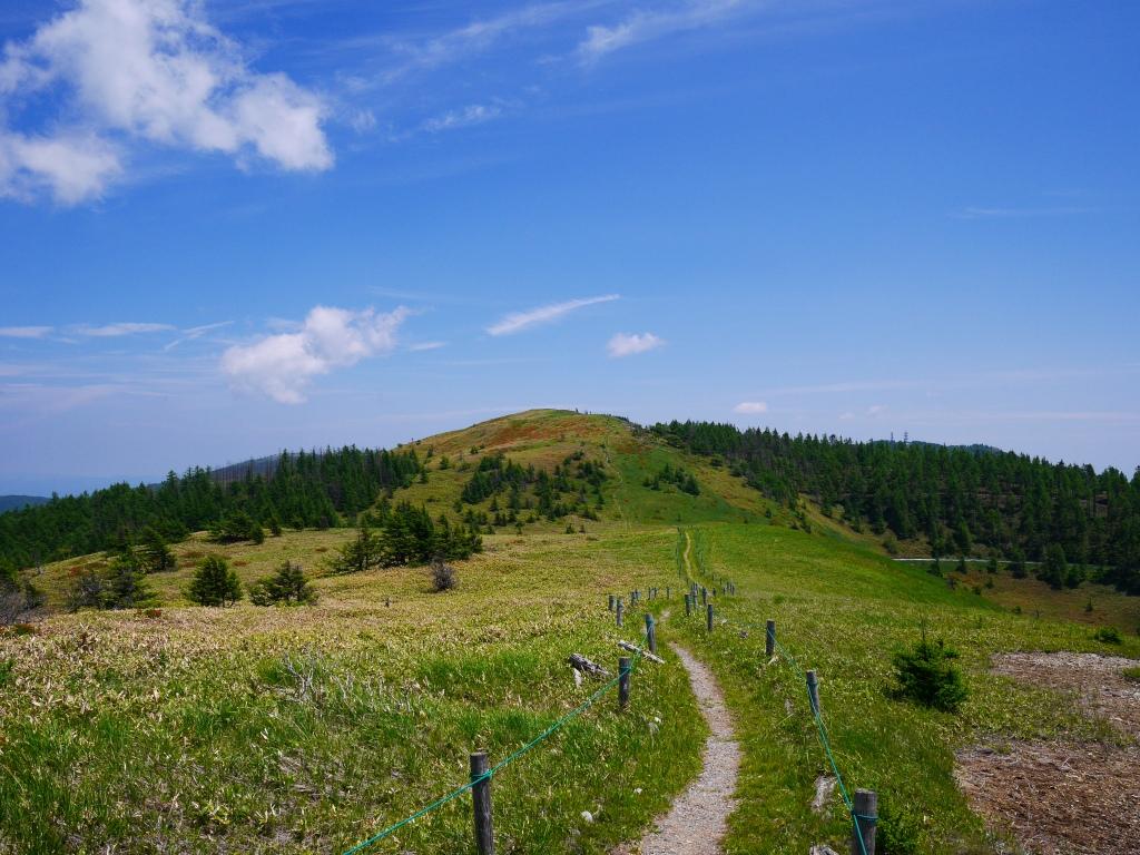 武石峰への小路