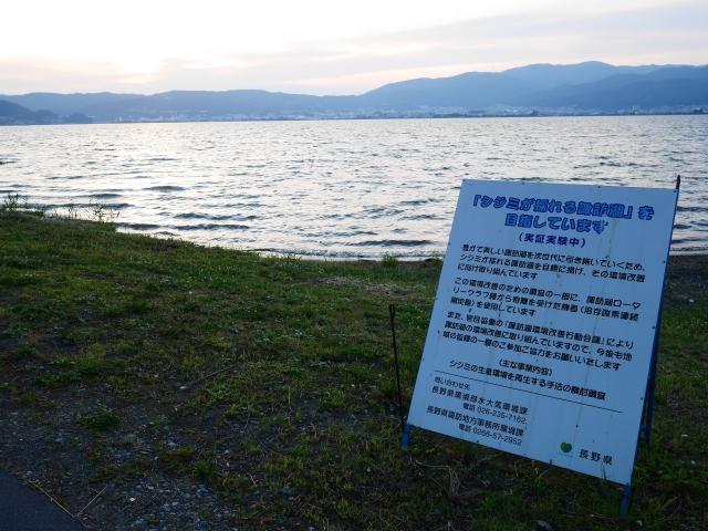 夕暮れの諏訪湖とシジミの放流実験看板