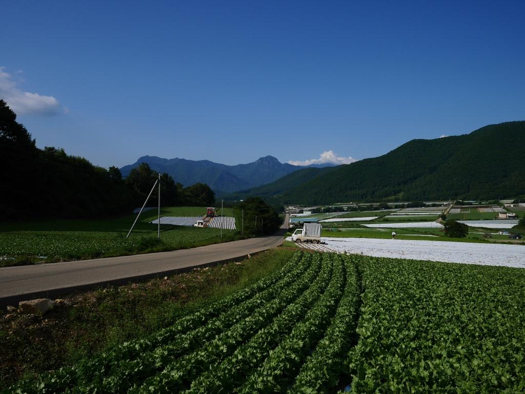 信州峠から川上村の高原野菜畑1