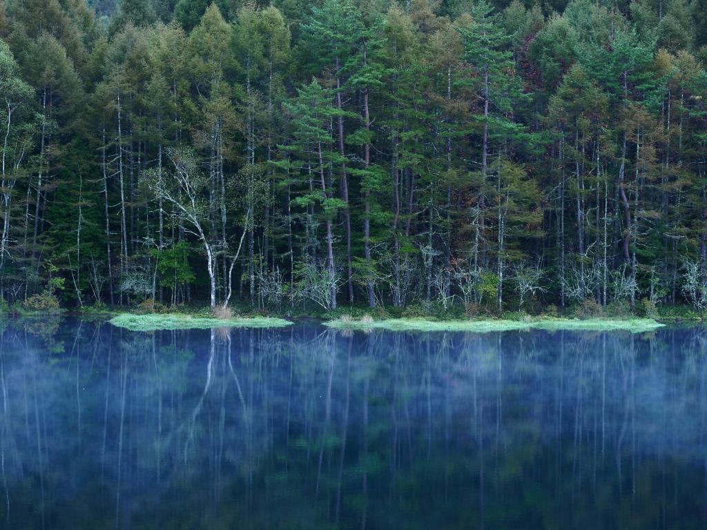 朝霧の御射鹿池1
