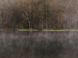 朝霧の御射鹿池6
