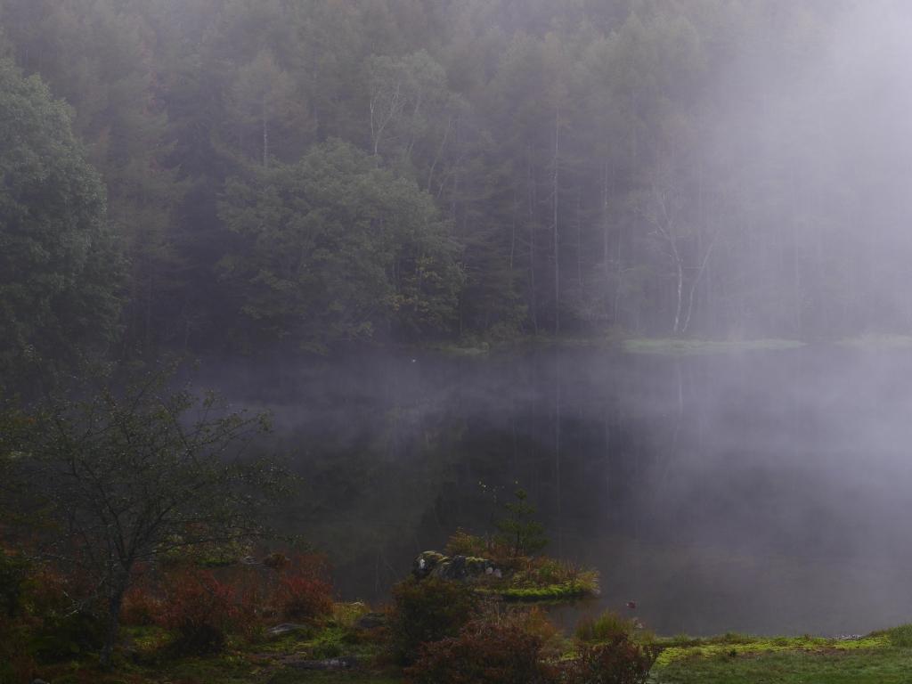 朝霧の御射鹿池5