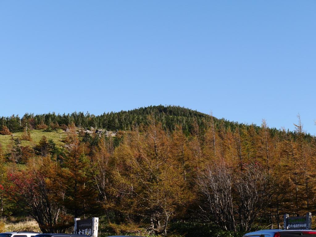 秋の大河原峠