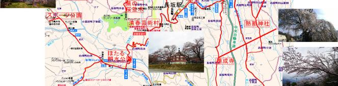 今年も巡ってきた桜のシーズンへ、勝手に「ほくとの桜」峡北マイナー版をご紹介(2017.4.9)