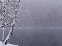 4月の雪、御射鹿池3