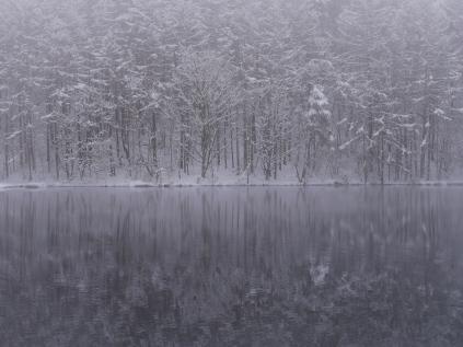 4月の雪、御射鹿池4