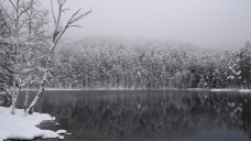 4月の雪、御射鹿池7
