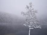 4月の雪、御射鹿池10