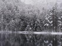 4月の雪、御射鹿池12