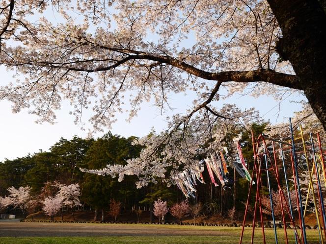静かなGWの一コマを、小さな春の夕暮れ(2017.4.30)