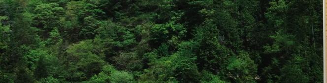 今月の読本「飯田線ものがたり 川村カネトがつないだレールに乗って」(太田朋子・神川靖子 新評論)その普段に寄り添う偉大なるローカル線の偉大な物語と小さな物語は、新たに見つめ直す合唱劇の先へ