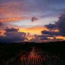 沸き立つ雲と色付く夕暮れ4