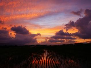 沸き立つ雲と色付く夕暮れ5
