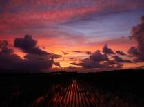 沸き立つ雲と色付く夕暮れ7