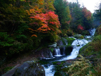 秋の朝・おしどり隠しの滝2017_2