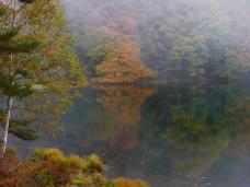 霧と紅葉の御射鹿池2017_4