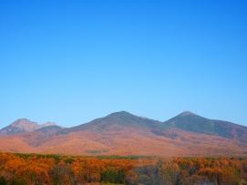 落葉松色に燃える八ヶ岳西麓3