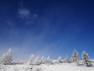 雪の美ヶ原201711_10