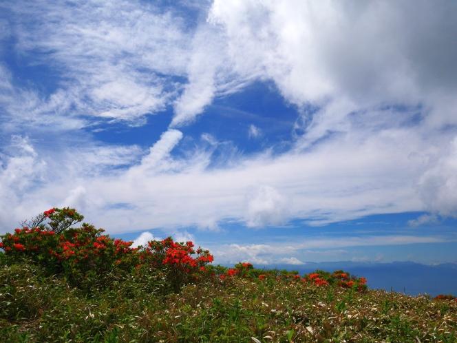 梅雨の晴れ間に、美ヶ原(2018.6.24)