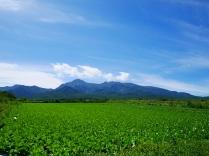 晩夏の空と高原野菜畑18