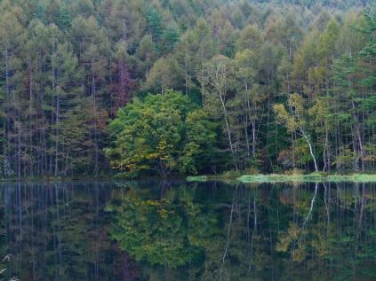 静かな秋の朝_御射鹿池2