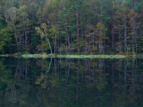 静かな秋の朝、御射鹿池(2018.10.4)
