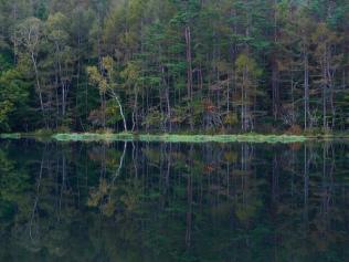 静かな秋の朝_御射鹿池3