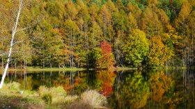 秋色の八ヶ岳西麓から御射鹿池へ(2018.10.21)