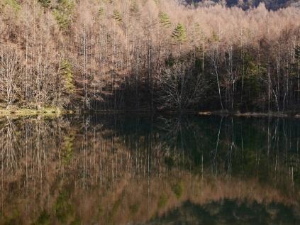 初冬の御射鹿池、鏡像