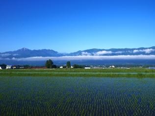 雲海と朝の圃場