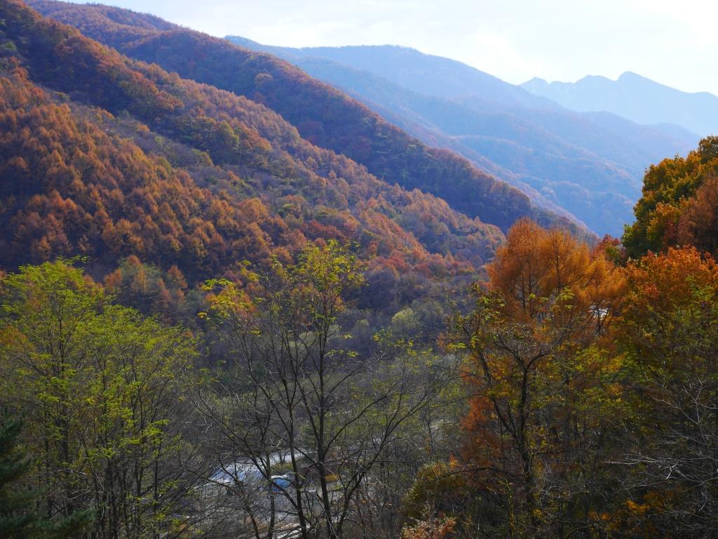 落葉松色の渓谷から仙丈ケ岳