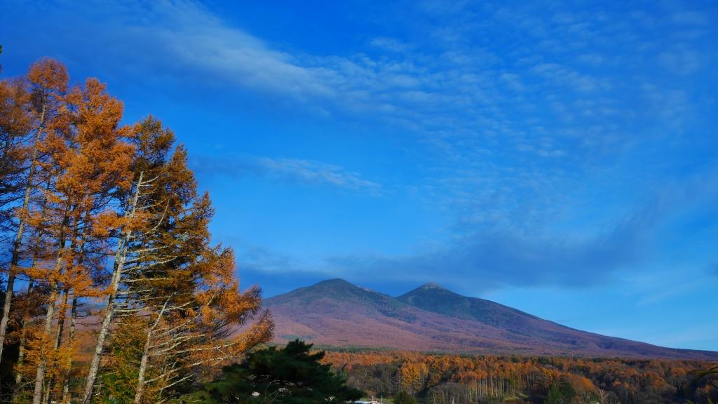 夕暮れの八ヶ岳と落葉松