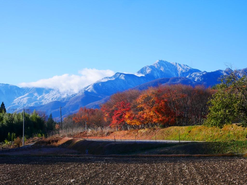紅葉と冠雪する甲斐駒